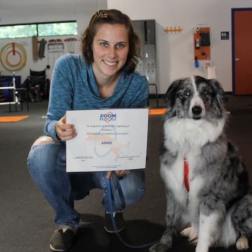 Smiling woman crouching with a grey dog sitting, posing with a certificate